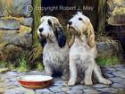 Original Basset Griffon Vendeen Painting by Robert May