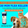 30 CAPSULES Flea Killer For CATS and DOGS 2-25 Lbs. 12 Mg Fast Shipping!