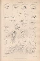 1874 Aufdruck ~Zeichnung~ Verschiedene Eye Nase Ohren & Hände Skizzen