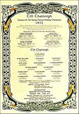 Kilkenny All-Ireland Senior Hurling Champions 1972: GAA Print