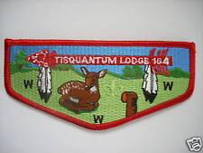 TISQUANTUM LODGE S-34 PATCH