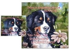 BERNESE MOUNTAIN DOG HARDBOARD PLAQUE and LENS CLEANING CLOTH SANDRA COEN ARTIST