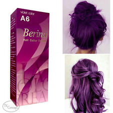 HOT!! Berina No.A6 Violet Permanent Hair Dye Color Cream Fashion Grunge Style