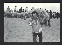 TANGER (MAROC) ACHAT d'un BELIER pour l'AID , Marché en 1979