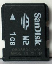 Sandisk 1GB M2 memory card.