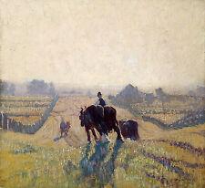 Elioth Gruner - Frosty Sunrise, Australian Art, Cow Cattle Poster, Canvas Print