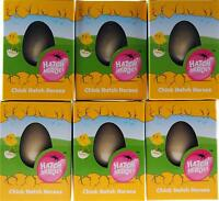 Set of 6 Grow Your Own Chick Animal Hatching Novelty Eggs - Easter Gift
