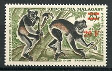 STAMP / TIMBRE DE MADAGASCAR NEUF P.A. N° 106 ** LEMURIEN