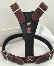 BRITISH /ENGLISH - BULLDOG HARNESS REAL LEATHER BLACK & CHESTNUT BRITISH FLAG