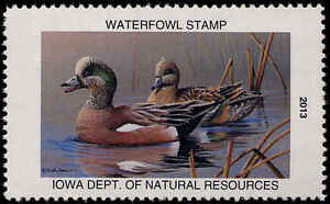 IOWA #42 2013 STATE DUCK  STAMP AMERICAN WIGEONS by Mike Brown