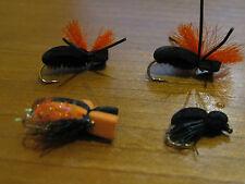 24 escarabajos para ciprinidos y truchas C/M. Pesca a mosca. FLY FISHING (99)