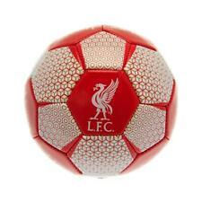 Liverpool FC Skill Ball (TA5143)