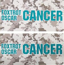 TWO Pack Toolbox Warning STICKERS Foxtrot Oscar OVARIAN Cancer Awareness Decal