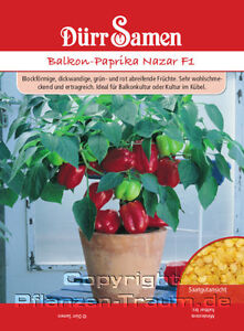 Balkon-Paprika Nazar F1 Dürr  ca 10 Samen