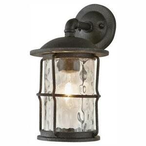 Home Decorators Collection 1-Light Gilded Iron 13.5 in. Outdoor Wall Lantern