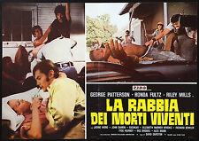 CINEMA-fotobusta LA RABBIA DEI MORTI VIVENTI patterson, fultz, mills, DURSTON