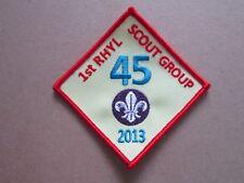 Rhyl 45 2013 Cloth Patch Badge Boy Scouts Scouting L5K E