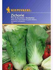 "Kiepenkerl "" Zichorie "" Pan di Zuccero "" ZUCKERHUT ""314  lagerfähig Salat Samen"