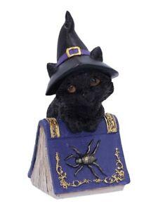 Nemesis Ornament Pocus Black Cat and Spellbook Figurine Blue 10x14cm