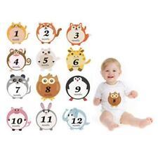 Newborn Baby Pregnant Women Monthly Photograph Stickers Month Milestone Kit KI