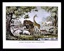 Currier and Ives Print - Adam Naming the Animals in Eden - Old Testament Genesis