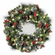 "National Tree CW7-306-24W-B1 24"" Crestwood Spruce Wreath with Silver Bristles"