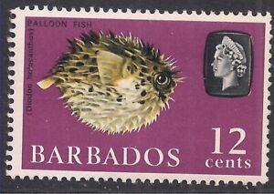 Barbados 1965 QE2 12ct Porcupine Fish MM SG 329 ( L957 )