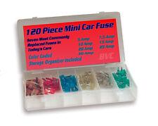 120 Piece Mini Car Fuses - Color Coded Automotive Fuse Assortment w/ Storage Box