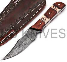 7 INCH UD CUSTOM DAMASCUS STEEL HUNTER SKINNER KNIFE STAG HANDLE *4651