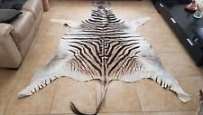 New South African Zebra Skin-Hide 100% Real X-Large 6' X 8' Free Shipping