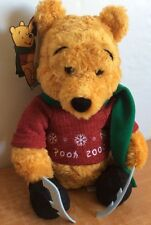 Disney Store Exclusive Winnie The Pooh Plush 2000 Winter Skiing Collectible RARE