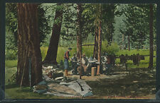 CA near Fresno LITHO 10s CAMP AMONG the PINES Kings River Canyon Mitchell 1806