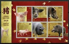 Curacao 2019 MNH Year of Pig 6v M/S Pigs Chinese Lunar New Year Stamps