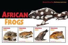Tanzania-2016-Frogs