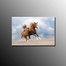FRAMED Animal Canvas Wall Art Decor Running Horses Canvas Print Ready To Hang