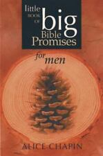 The Little Book of Big Bible Promises for Men