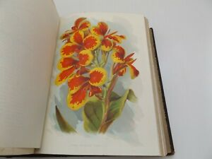 1906 The GARDENER'S ASSISTANT 2Vol. by ROBERT THOMPSON Plates BOTANY Gardening