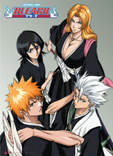 "Bleach Anime Ichigo Rukia Toshiro Soul Reapers Group Wall Scroll Legit 31""x43"""