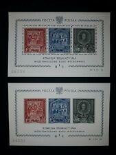 Poland.1946. International Bureau of Education.(REPLICA.COPY.)BLOCKS - 2 PCs.