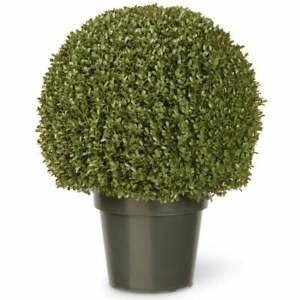 Nearly Natural 22-inch Mini Boxwood Ball with Green Pot
