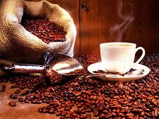 MODERN PHOTOGRAPHY COFFEE CUP BEAN SACK SCOOP LARGE POSTER ART PRINT BB3129A