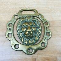 Vintage Horse Brass Lion Head Design