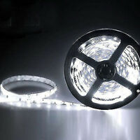 12V 5M SMD 3528 300Leds Flexible Warm Cool White Non-Waterproof LED Strip Light