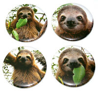 SUPER CUTE SLOTHS! Set of 4 Large FRIDGE MAGNETS sloth
