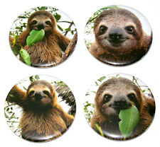 SUPER CUTE SLOTHS! Set of 4 Large FRIDGE MAGNETS sloth