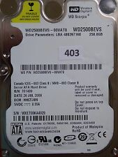 250GB Western Digital WD2500BEVS-00VAT0 | HBCTJBN | 26 JUL 2008  #403