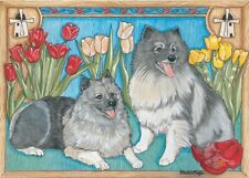 Keeshond Blank Note Card