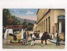Madeiras Funchal Carro de Bois Vintage Postcard 643a