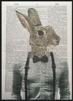 Hare Rabbit Print Vintage Dictionary Page Wall Art Picture Animal In Clothes