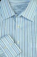 Charles Tyrwhitt Men's Blue White Navy Stripe Cotton Dress Shirt 19 x 35